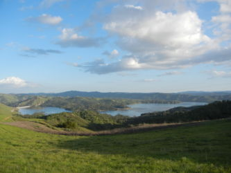 Springtime at Lake Nacimiento